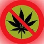 marijuana rejected